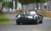 Jaguar XJ13, The most beautiful car to never race